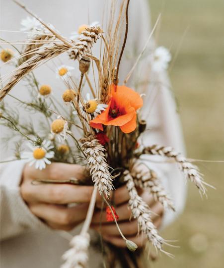 15 วิธีปลูกความชื่นชมยินดีในชีวิต